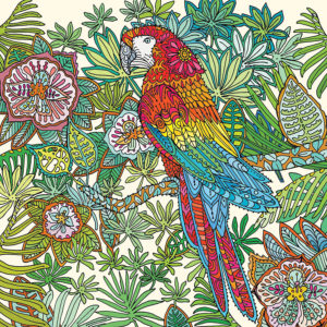 Fay's Studio Cards-Parrot