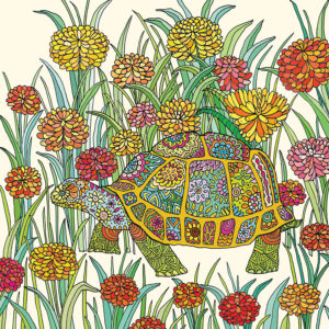 Fay's Studio Cards-Tortoise