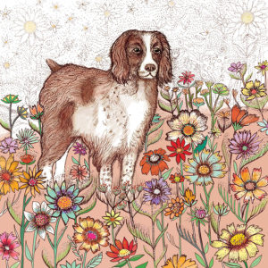 Fay's Studio Cards-Spaniel