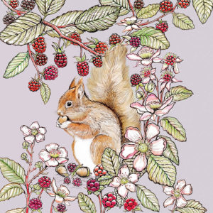 Fay's Studio Cards-Squirrel