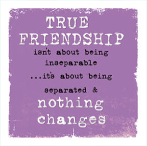 True friendship Fridge Magnet