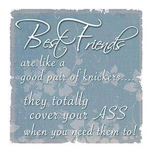 Best Friends knickers Fridge Magnet