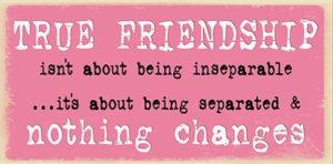 True friendship Plaque