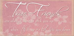 True friends the world Plaque